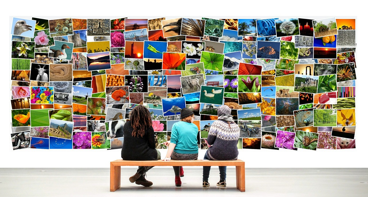Best Software to Organize Your Photos on a Windows PC