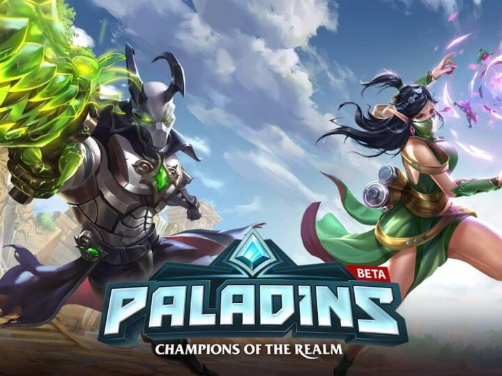 Pro Paladins Player