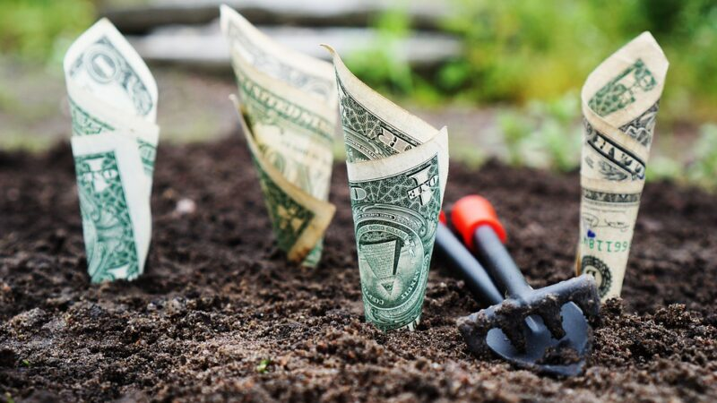 5 Smart Investments on a Small Budget