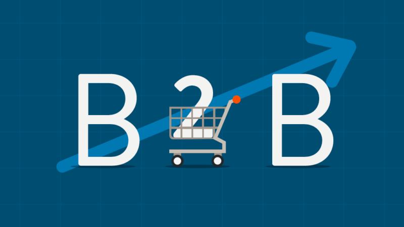 Covering Your B2B Ecommerce Effectiveness