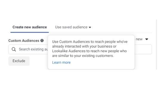 Utilize Custom Audience
