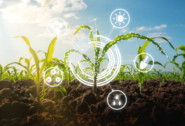 How Technology Is Changing Agriculture