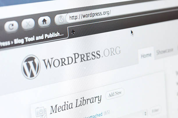10 Things You Should Know Before Hiring WordPress Developer